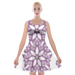 Frame Flower Star Purple Velvet Skater Dress