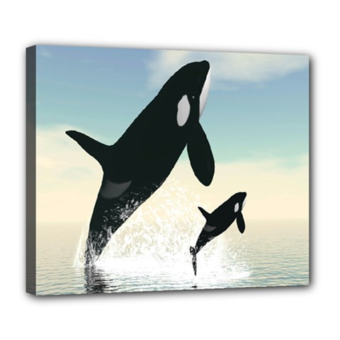Whale Mum Baby Jump Deluxe Canvas 24  X 20   by Alisyart