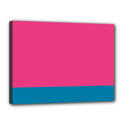 Flag Color Pink Blue Canvas 16  X 12  by Alisyart