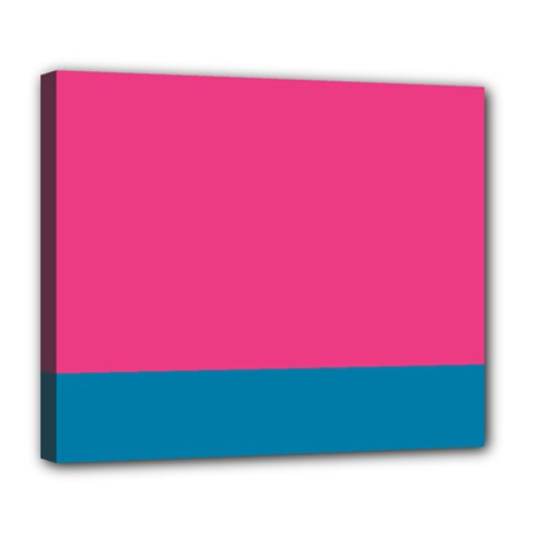 Flag Color Pink Blue Deluxe Canvas 24  X 20   by Alisyart