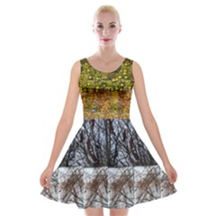 Spring, Summer, Autumn, & Winter (with Kitten)  Velvet Skater Dress