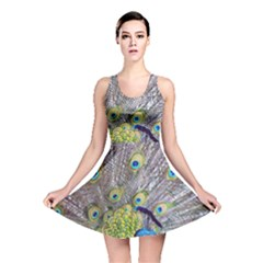 Peacock Bird Feathers Reversible Skater Dress by Simbadda