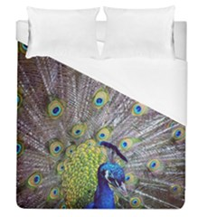 Peacock Bird Feathers Duvet Cover (queen Size) by Simbadda