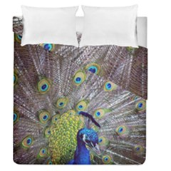 Peacock Bird Feathers Duvet Cover Double Side (queen Size) by Simbadda