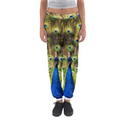 Peacock Bird Women s Jogger Sweatpants by Simbadda