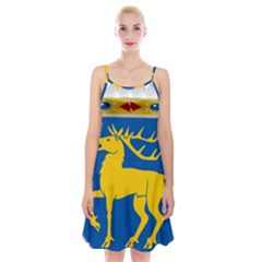 Coat Of Arms Of Aland Spaghetti Strap Velvet Dress by abbeyz71
