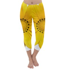 Transparent Flower Summer Yellow Capri Winter Leggings