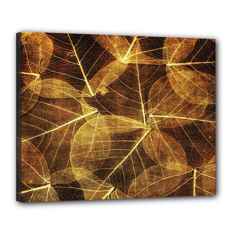Leaves Autumn Texture Brown Canvas 20  X 16  by Simbadda