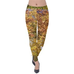 Spring, Summer, And Autumn, With Kitty Velvet Leggings by SusanFranzblau