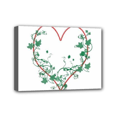 Heart Ranke Nature Romance Plant Mini Canvas 7  X 5  by Simbadda