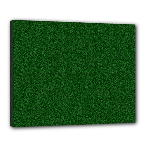 Texture Green Rush Easter Canvas 20  x 16