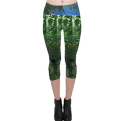 Trees On The Water With Kitty Capri Leggings  by SusanFranzblau