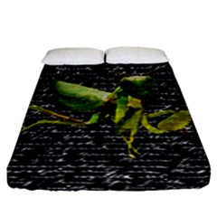 Mantis Fitted Sheet (king Size) by Valentinaart
