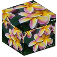 Premier Mix Flower Storage Stool 12   by alohaA
