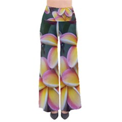 Premier Mix Flower Pants by alohaA