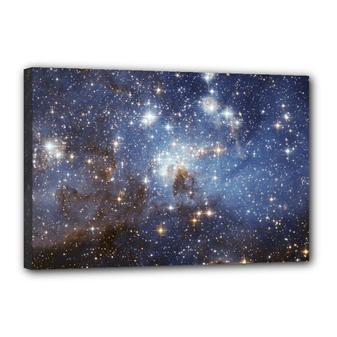 Large Magellanic Cloud Canvas 18  X 12  by SpaceShop