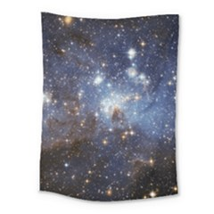Large Magellanic Cloud Medium Tapestry