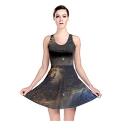 Seagull Nebula Reversible Skater Dress by SpaceShop