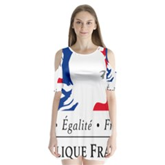 Symbol Of The French Government Shoulder Cutout Velvet  One Piece by abbeyz71