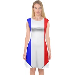 Shield On The French Senate Entrance Capsleeve Midi Dress by abbeyz71