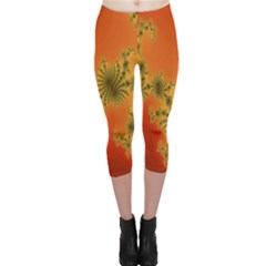 Decorative Fractal Spiral Capri Leggings  by Simbadda