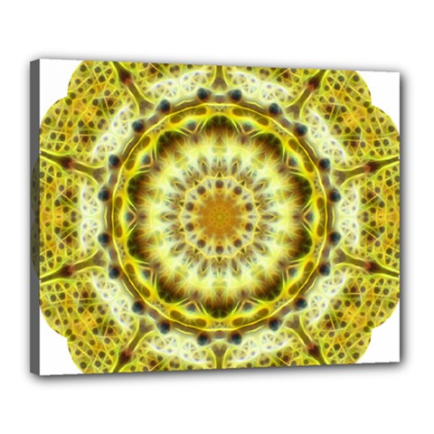 Fractal Flower Canvas 20  X 16  by Simbadda