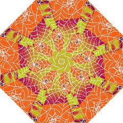 Orange Guy Spider Web Folding Umbrellas by Simbadda