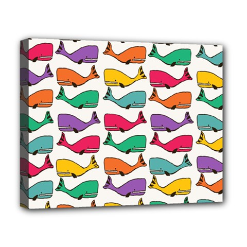Small Rainbow Whales Deluxe Canvas 20  X 16   by Simbadda
