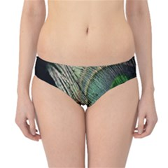 Feather Peacock Drops Green Hipster Bikini Bottoms by Simbadda