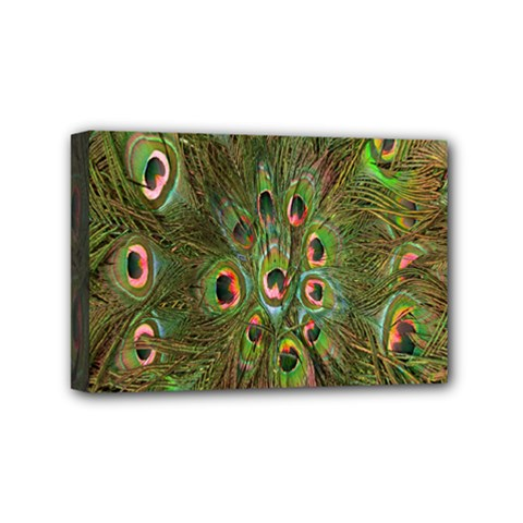 Peacock Feathers Green Background Mini Canvas 6  X 4  by Simbadda