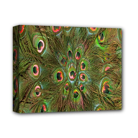 Peacock Feathers Green Background Deluxe Canvas 14  X 11