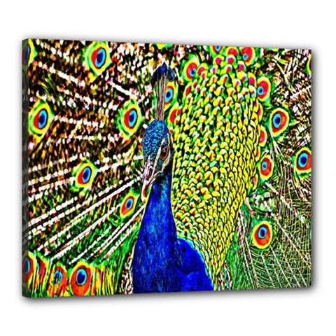 Graphic Painting Of A Peacock Canvas 24  X 20