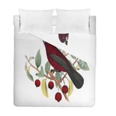 Bird On Branch Illustration Duvet Cover Double Side (full/ Double Size) by Amaryn4rt