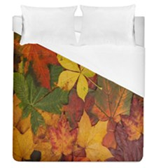 Colorful Autumn Leaves Leaf Background Duvet Cover (queen Size) by Amaryn4rt