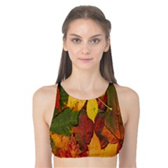 Colorful Autumn Leaves Leaf Background Tank Bikini Top by Amaryn4rt