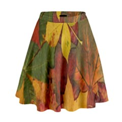 Colorful Autumn Leaves Leaf Background High Waist Skirt by Amaryn4rt