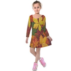 Colorful Autumn Leaves Leaf Background Kids  Long Sleeve Velvet Dress by Amaryn4rt