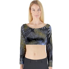 Fractal Wallpaper With Blue Flowers Long Sleeve Crop Top