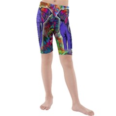 Abstract Elephant With Butterfly Ears Colorful Galaxy Kids  Mid Length Swim Shorts