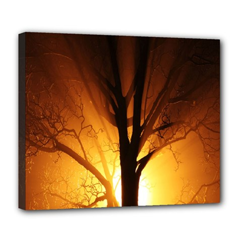 Rays Of Light Tree In Fog At Night Deluxe Canvas 24  X 20   by Amaryn4rt