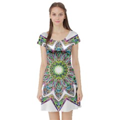 Decorative Ornamental Design Short Sleeve Skater Dress by Amaryn4rt