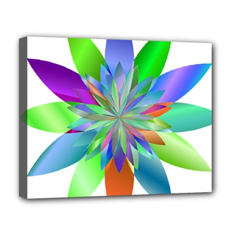 Chromatic Flower Variation Star Rainbow Deluxe Canvas 20  X 16