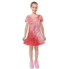 Pink Fur Background Kids  Short Sleeve Velvet Dress