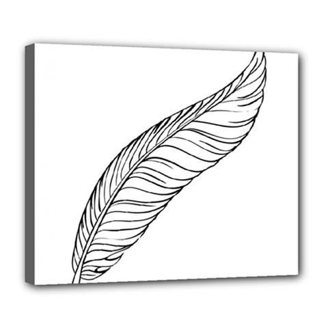 Feather Line Art Deluxe Canvas 24  X 20   by Simbadda