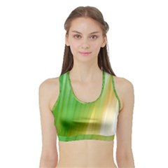 Folded Digitally Painted Abstract Paint Background Texture Sports Bra With Border by Simbadda