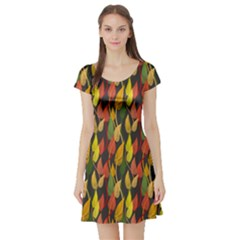 Colorful Leaves Yellow Red Green Grey Rainbow Leaf Short Sleeve Skater Dress