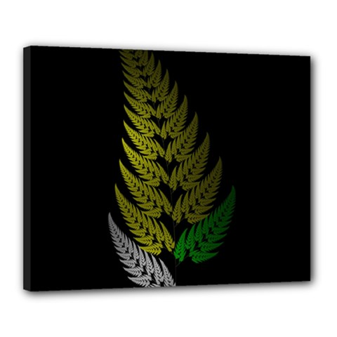 Drawing Of A Fractal Fern On Black Canvas 20  X 16  by Simbadda