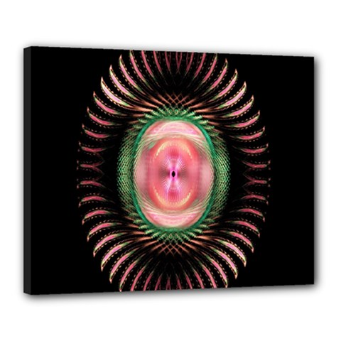 Fractal Plate Like Image In Pink Green And Other Colours Canvas 20  X 16  by Simbadda