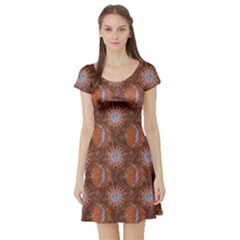 Brown Composition With Sun And Moon Short Sleeve Skater Dress by CoolDesigns