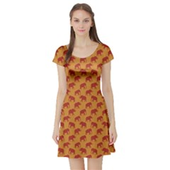 Orange Pattern Elephants Short Sleeve Skater Dress by CoolDesigns